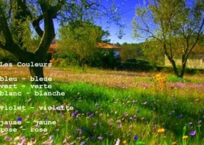 LearnArt Französisch Couleurs SprachenGalerie