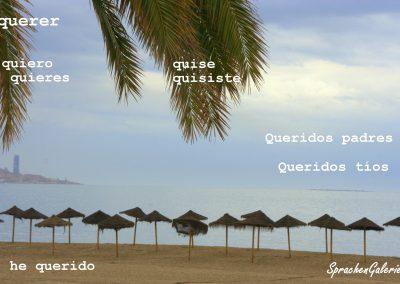 LearnPic Spanisch quererT