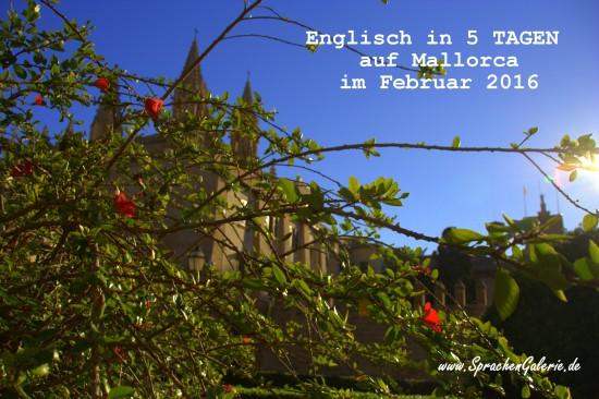 Mallorca-Feb-2016-Englisch-lernen-in-5-Tagen-SprachenGalerie-550×366