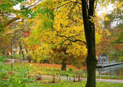 Lietzensee Englisch Erlebnisoaching Herbst SprachenGalerie