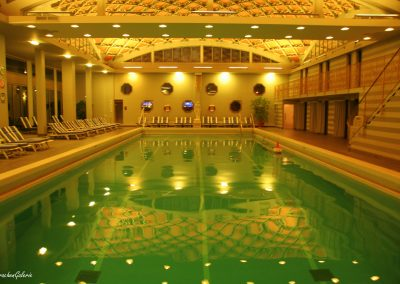 Fut Kongress Metaforum 2014 indoor pool