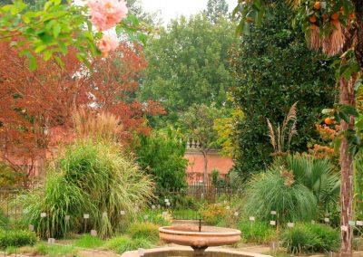 Padua Botanical Garden SprachenGalerie
