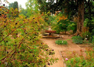 Padua Botanischer Garten Englisch lernen SprachenGalerie