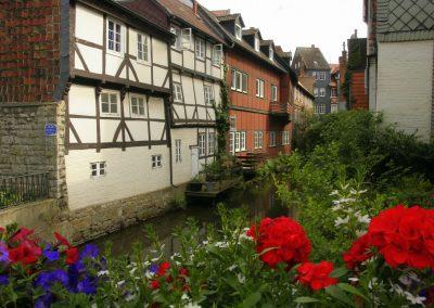 Englisch lernen in  Wolfenbüttel
